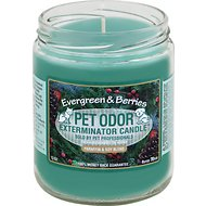Pet Odor Exterminator Evergreen & Berries Deodorizing Candle, 13-oz jar