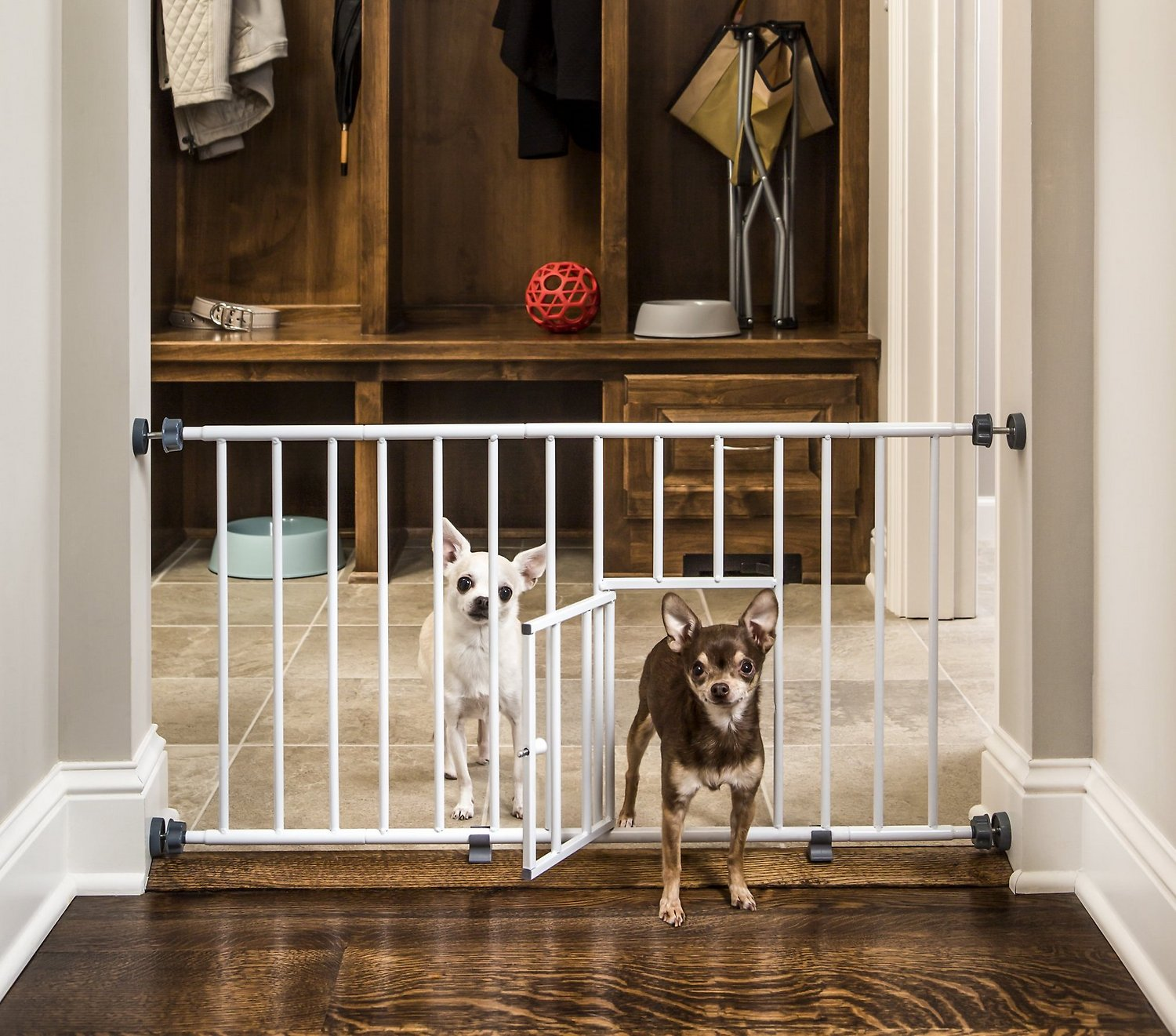 Carlson Pet Products Mini Gate With Pet Door Chewycom