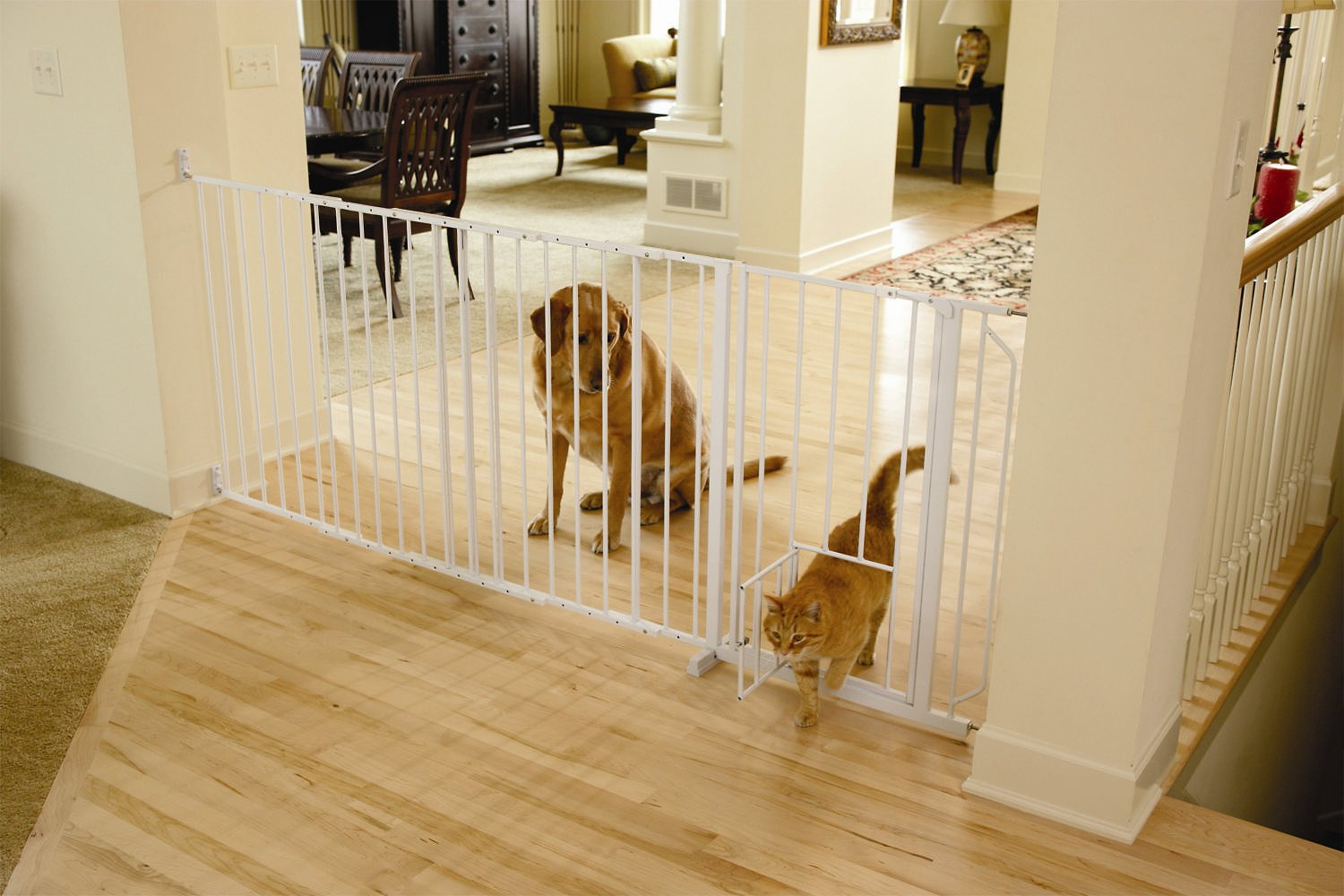 Carlson Pet Products Maxi Walk Thru Gate With Pet Door Chewycom