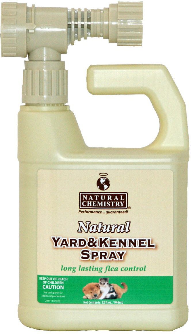 Yard Flea Treatments Natural