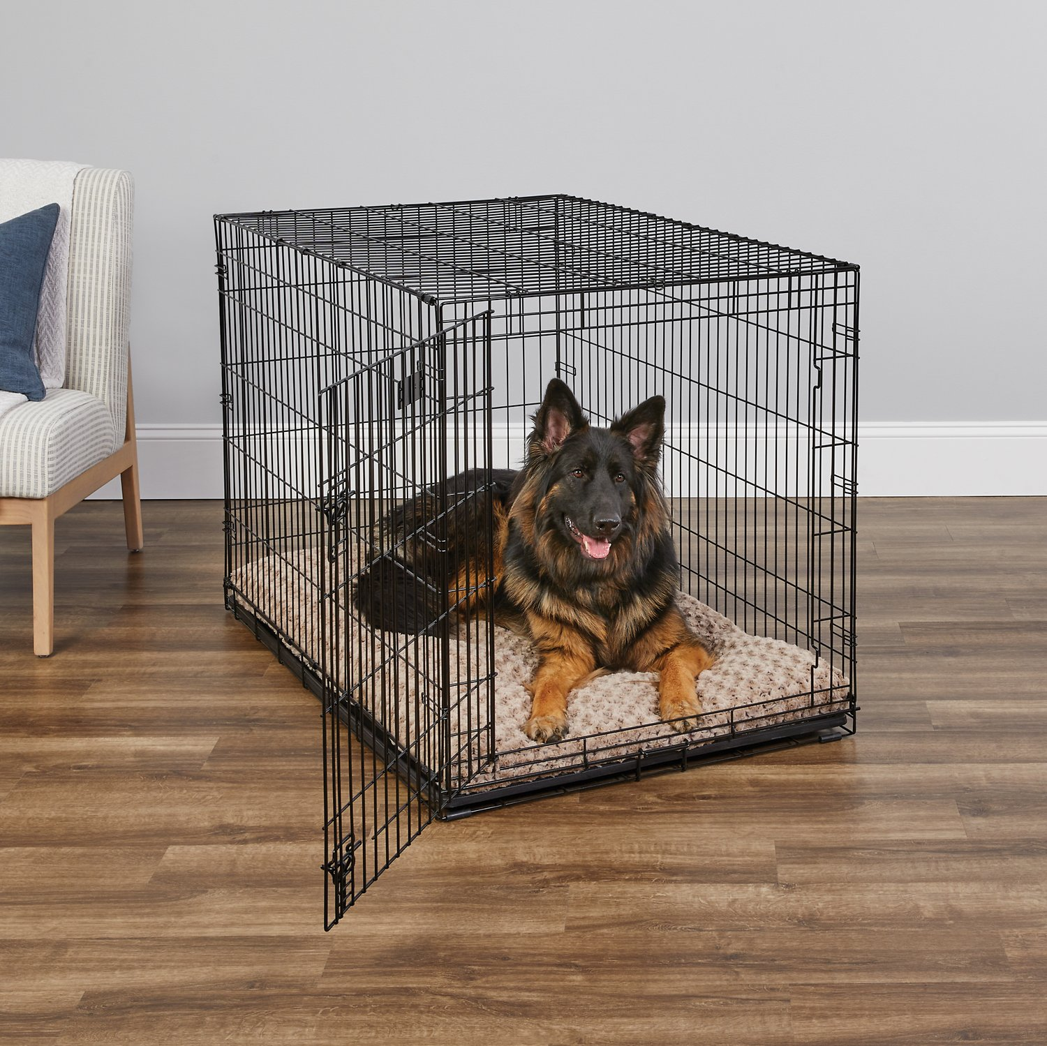 Midwest Icrate Single Door Fold Amp Carry Dog Crate 48 Inch