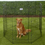 MidWest Exercise Pen with Step-Thru Door, Black E-Coat, 48-inch