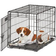 MidWest Life Stages Single Door Dog Crate, 24-inch