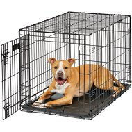 MidWest Life Stages Single Door Dog Crate, 36-inch
