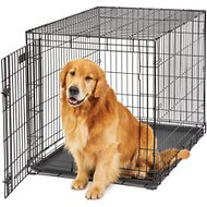 MidWest LifeStages Single Door Dog Crate, 42-in