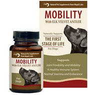 Wapiti Labs Mobility Formula Dog Powder Supplement, 1.06-oz bottle