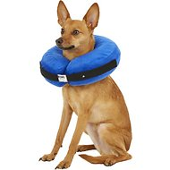KONG Cloud Collar for Dogs & Cats, Medium