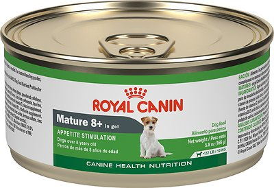 2. Royal Canin Mature 8+ Canned Dog Food