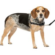 PetSafe Easy Walk Dog Harness, Black/Silver, Small/Medium