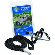 PetSafe Come With Me Kitty Harness & Bungee Cat Leash, Black/Silver, Medium