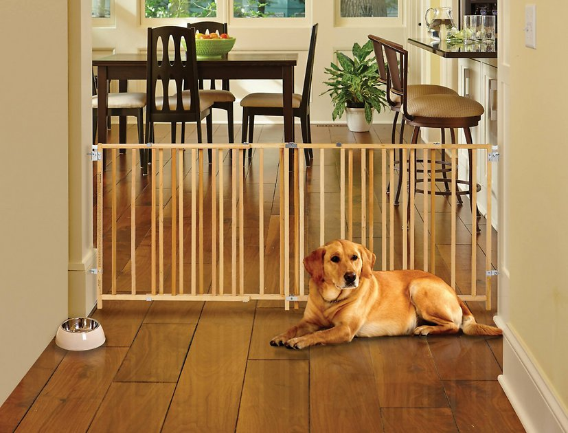 Mypet Wood Extra Wide Swing Pet Gate For Dogs Cats Chewy Com