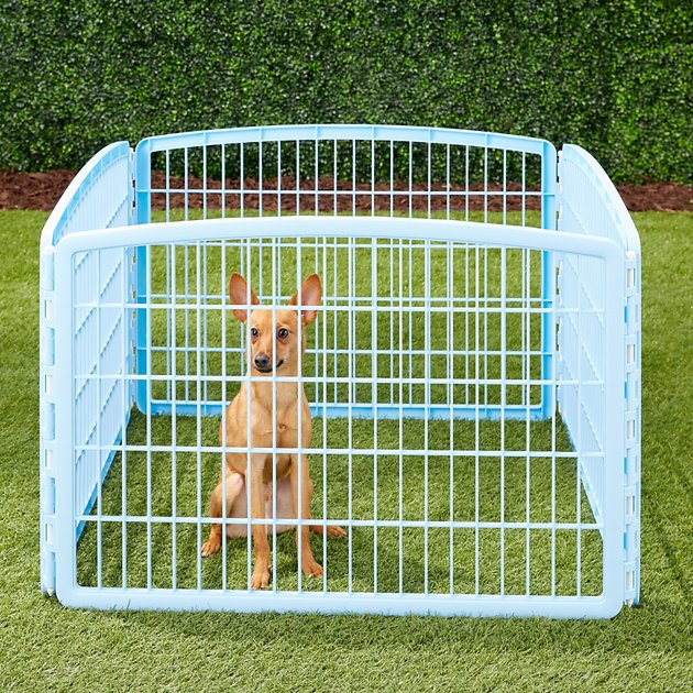 Iris 4 Panel Exercise Plastic Play Pen Blue Chewy Com