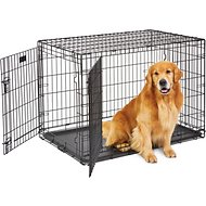 MidWest Life Stages Double Door Dog Crate, 42-inch