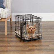 MidWest iCrate Single Door Fold & Carry Dog Crate, 18-inch