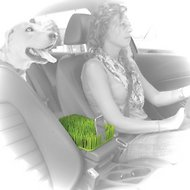 Kurgo Auto Grass Center Console Cover