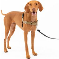 PetSafe Easy Walk Dog Harness, Fawn/Brown, Medium