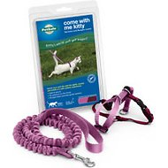 PetSafe Come With Me Kitty Harness & Bungee Cat Leash, Dusty Rose/Burgundy, Small
