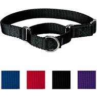 PetSafe Premier Martingale Dog Collar, Black, Small, 3/4-inch