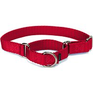 PetSafe Premier Martingale Dog Collar, Red, Small, 3/4-inch