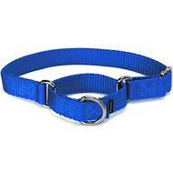 PetSafe Premier Martingale Dog Collar, Royal Blue, Large, 1-inch