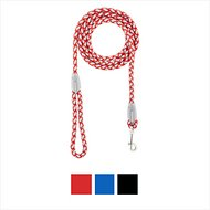 Four Paws Nite Brite Reflecting Dog Leash, Red, Small