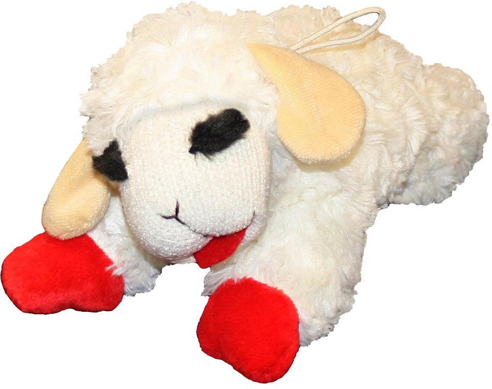 Large Toy Dogs : Multipet lamb chop plush dog toy regular chewy