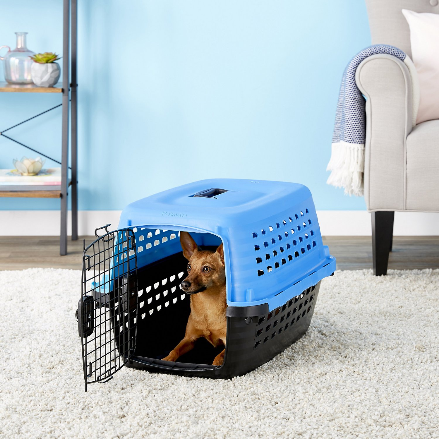petmate compass fashion kennel blue small  chewycom - petmate compass fashion kennel blue