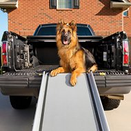 Solvit Deluxe Telescoping Pet Ramp, X-Large