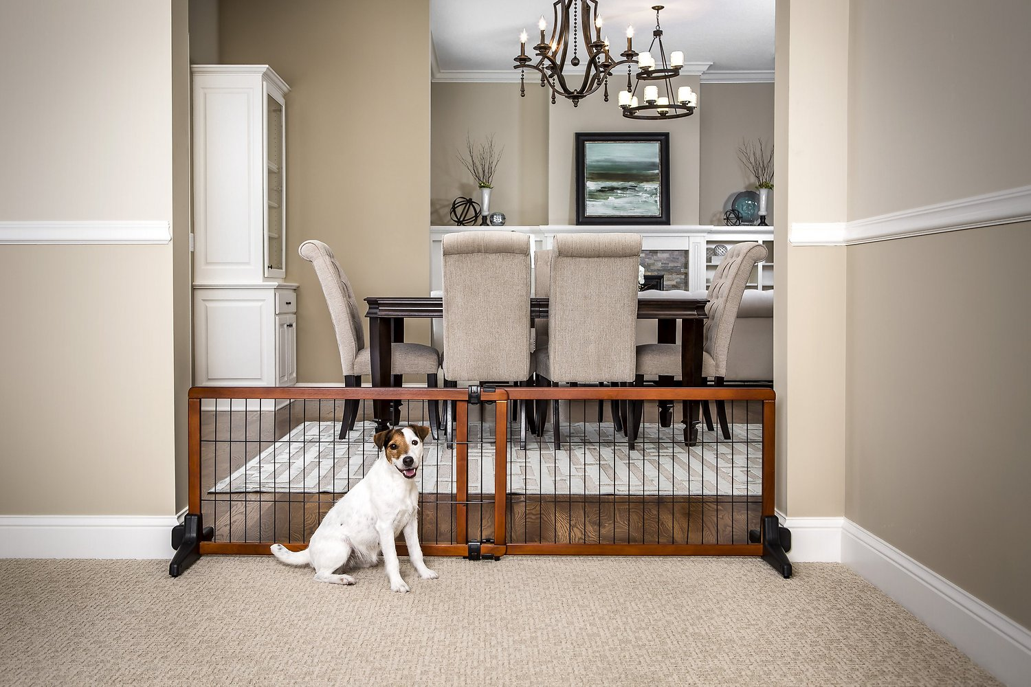 Carlson Pet Products Design Studio Freestanding Extra Wide Pet Gate, 20 In    Chewy.com