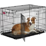 MidWest Life Stages A.C.E Double Door Dog Crate, 36-inch