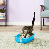 Van Ness Cat Litter Pan, Blue, Small
