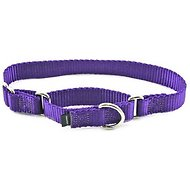 PetSafe Premier Martingale Dog Collar, Deep Purple, Medium, 1-inch