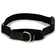 PetSafe Premier Quick Snap Martingale Dog Collar, Black, Medium, 1-inch