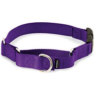 PetSafe Premier Quick Snap Martingale Dog Collar, Deep Purple, Small, 3/4-inch