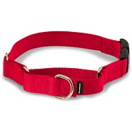 PetSafe Premier Quick Snap Martingale Dog Collar, Red, Medium, 3/4-inch
