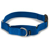 PetSafe Premier Quick Snap Martingale Dog Collar, Royal Blue, Medium, 3/4-inch