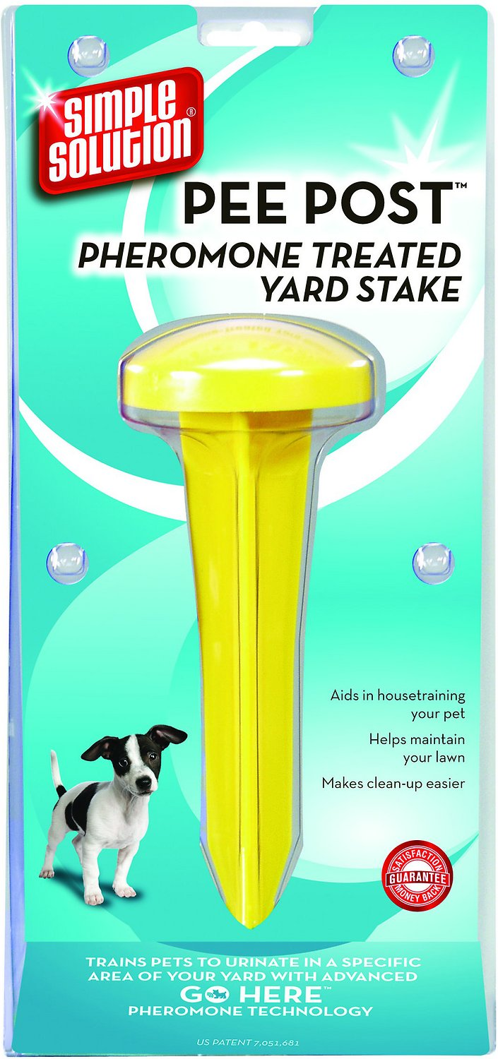 how to keep dogs from entering your yard