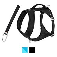 Kurgo Go-Tech Adventure Dog Harness with Seatbelt Loop, Black, Large