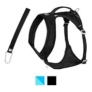 Kurgo Go-Tech Adventure Dog Harness with Seatbelt Loop, Black, Giant