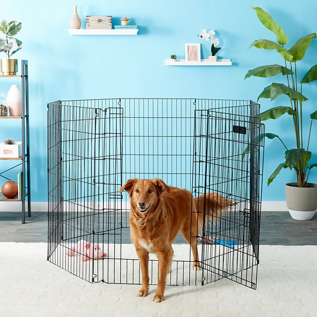 Precision pet products ultimate exercise pen with door for Dog exercise pen with door
