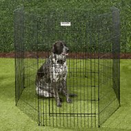 Precision Pet Products Ultimate Exercise Pen with Door, X-Large