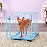 MidWest iCrate Single Door Dog Crate, Blue, 24-in