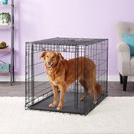 MidWest Ovation Single Door Dog Crate, 42-in