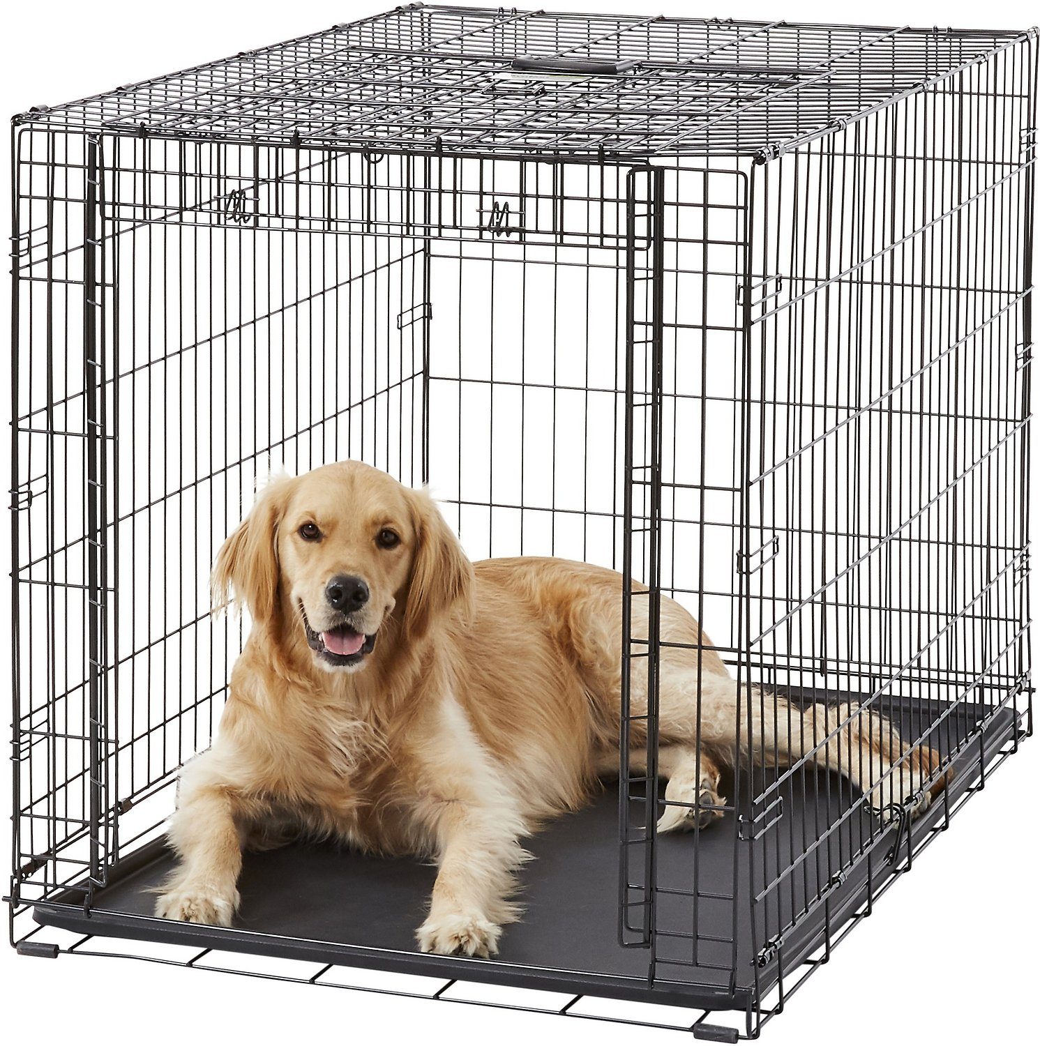 Midwest Ovation Single Door Dog Crate 42 In Chewy