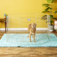 MidWest Exercise Pen with Step-Thru Door, Gold Zinc, 36-inch