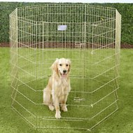 MidWest Exercise Pen with Step-Thru Door, Gold Zinc, 48-inch
