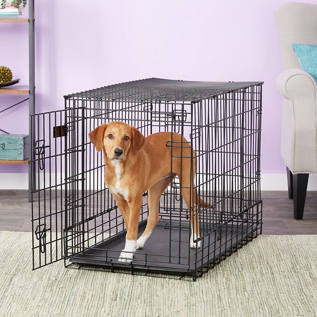 Midwest Solutions Series Side By Side Double Door Suv Dog Crate 36