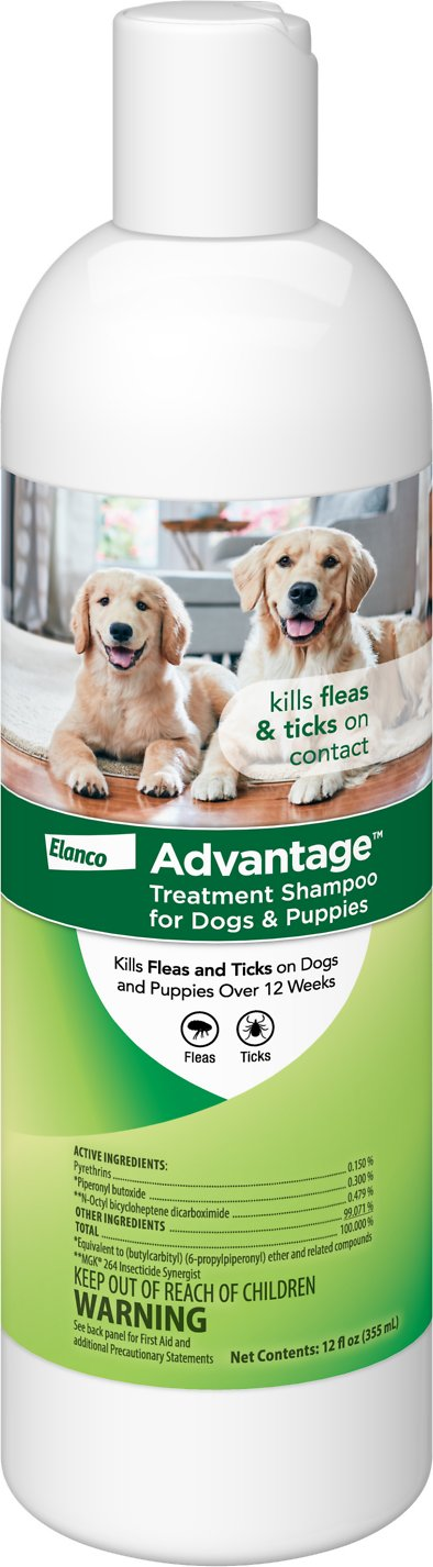 Reviews For Best Dog Flea And Tick Treatment
