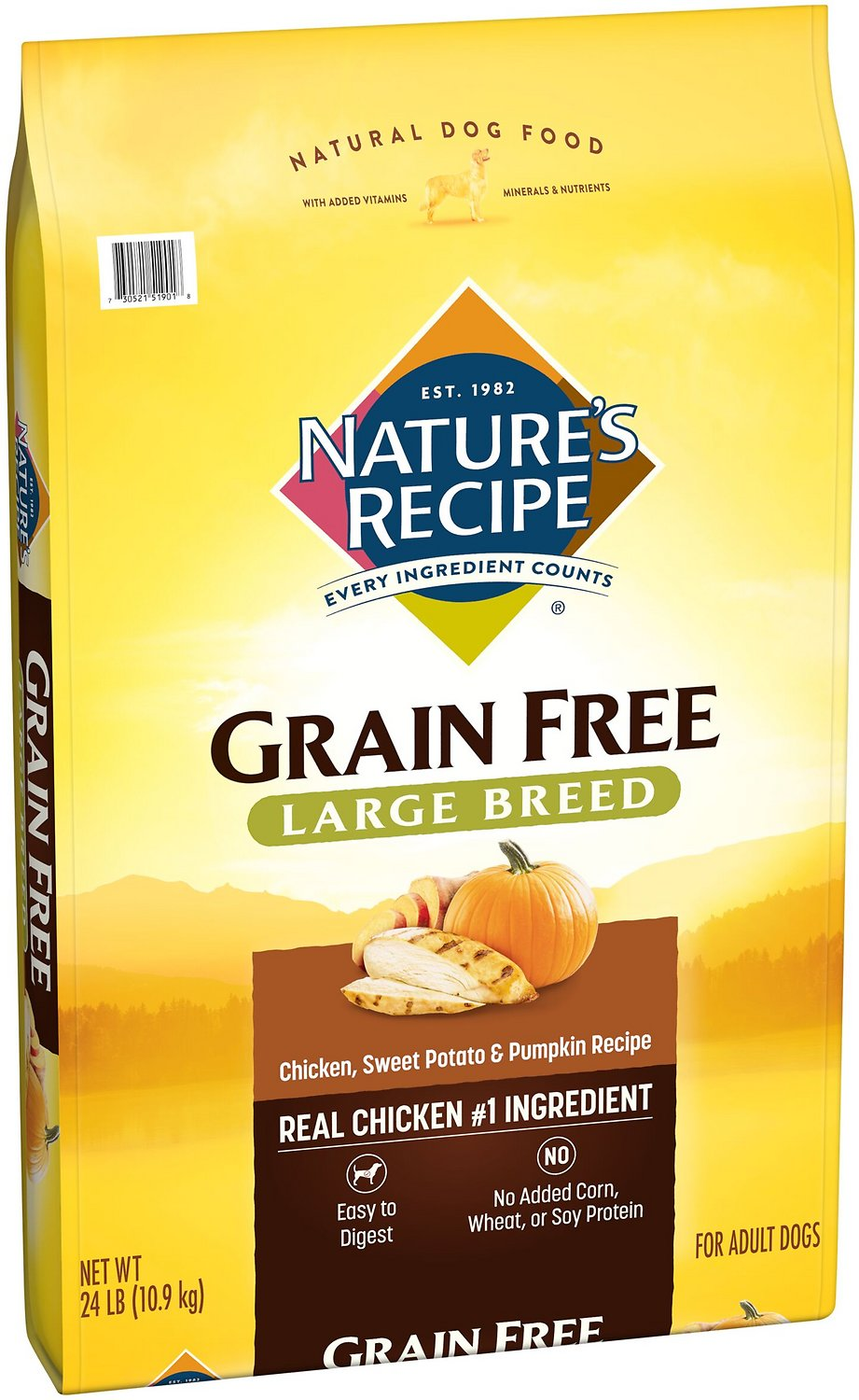Natures recipe large breed grain free chicken sweet potato natures recipe large breed grain free chicken sweet potato pumpkin recipe dry dog food 24 lb bag chewy forumfinder Gallery