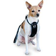 K&H Pet Products Travel Safety Dog Harness, Medium